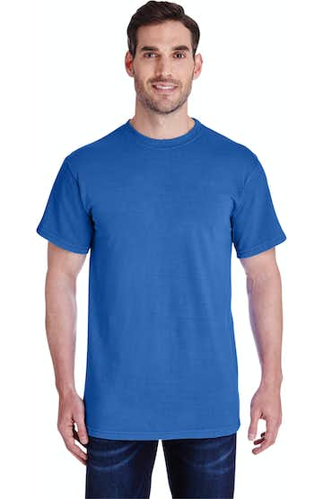 Collegiate Cotton CD1233 Royal
