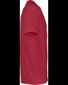 Platinum P601 Red