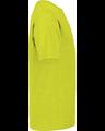 Delta 65300 Safety Green