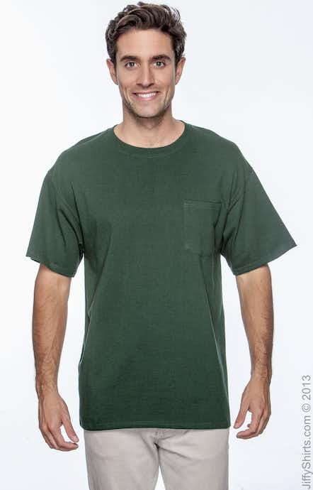 Hanes H5590 Deep Forest