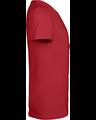 Delta 11736 Cardinal