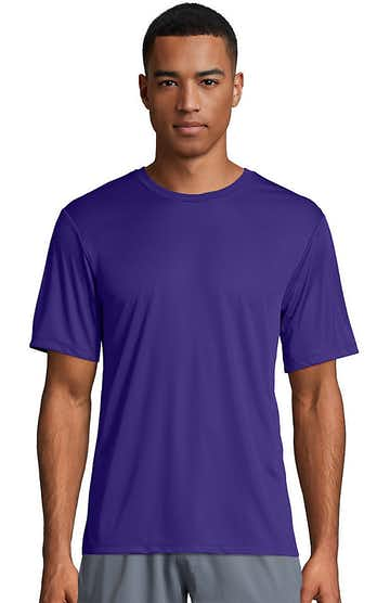 Hanes 4820 Purple