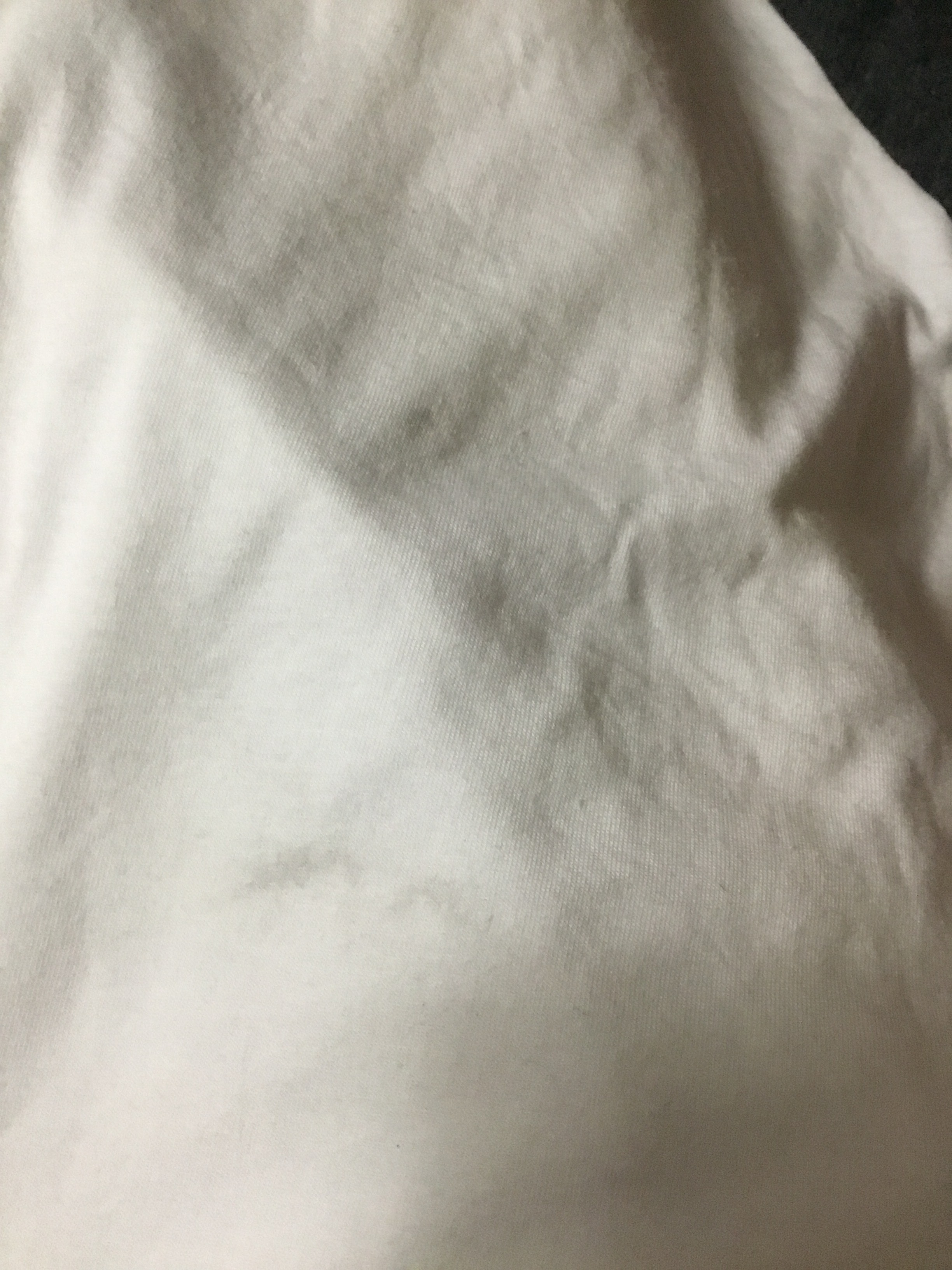 Anvil 6755 customer review by  Giving five stars but a couple of shirts had something on them:-(